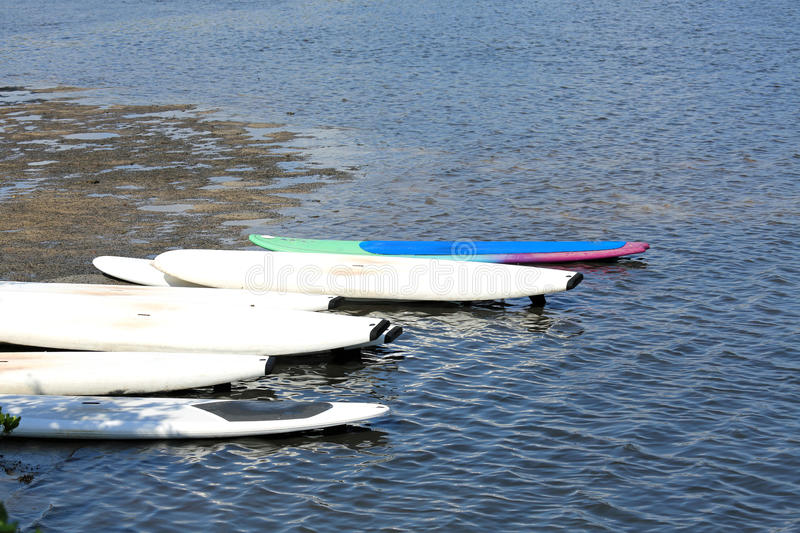 Paddleboards at the Ready royalty free stock photography