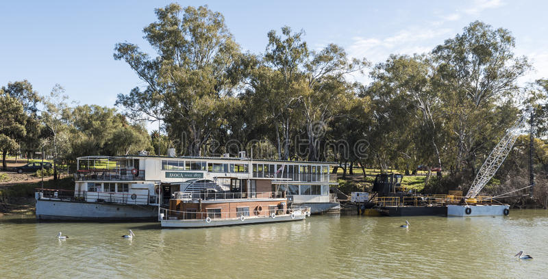 Paddleboat Avoca, Murray River, Mildura, Australia. The paddle boat Avoca moored on the peaceful waters of the River Murray, Mildura, Australia royalty free stock image