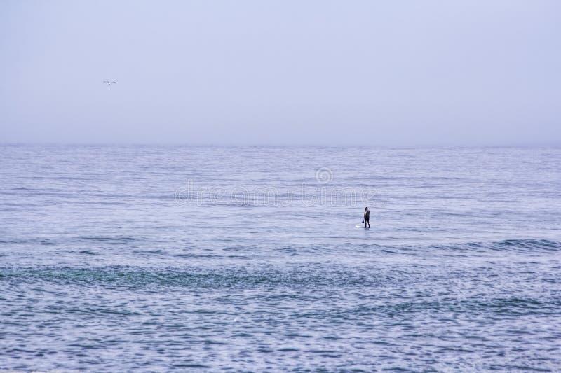 Paddler apenas no oceano fotografia de stock royalty free
