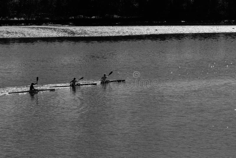 Paddlers реки Canoeing тренируя надземный ландшафт стоковые фото