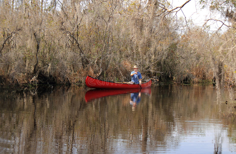 Paddling a Canoe in the Okefenokee Swamp, Georgia. Man Paddling a Red Canoe on the Suwanee River - Okefenokee Swamp, Georgia stock images