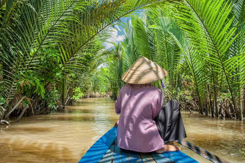 Paddling in the Mekong delta. Unrecognizable Vietnamese woman paddling a traditional boat in the Mekong delta at Ben Tre island. The Mekong river is a major stock image