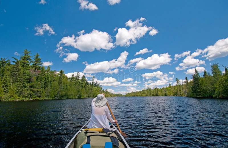 Download Paddling into the wilds stock image. Image of outdoors - 21257793