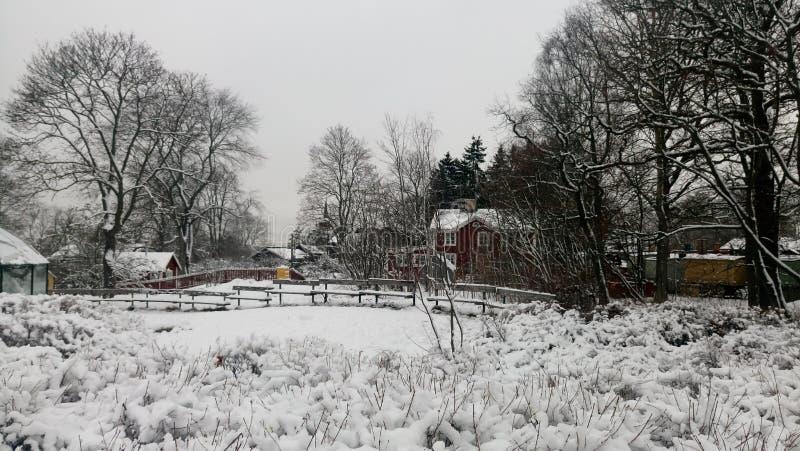 Снег покрыл дом и paddock фермы стоковые фото