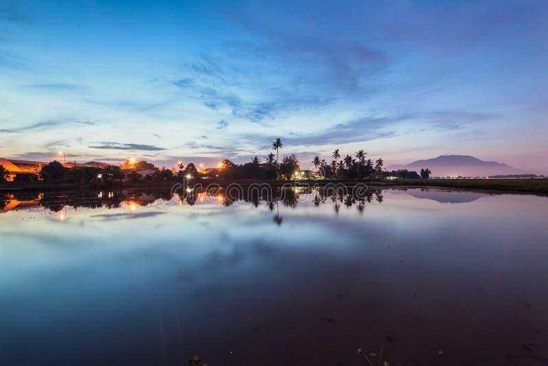 Paddy Field in Bukit Mertajam Penang, Malaysia. Reflection Sunrise in Paddy Field in Bukit Mertajam Penang, Malaysia stock images