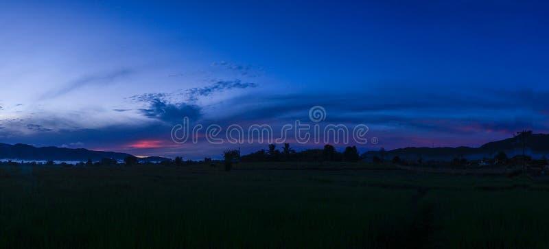 Paddy Field Panorama And Blue himmel royaltyfri foto