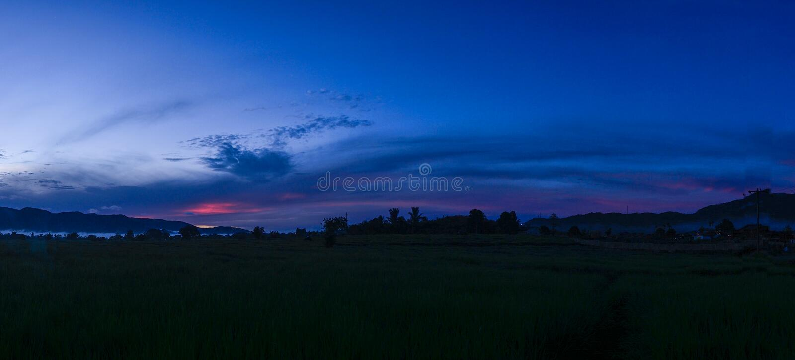 Paddy Field Panorama And Blue Sky royalty free stock photo