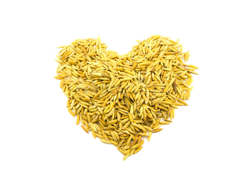 Paddy rice heart shape. On white background royalty free stock photography