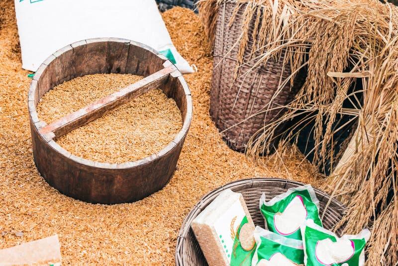 Padie van landbouwers in het vathout stock foto