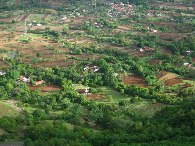Padiegebieden in Indisch dorp Satara stock foto