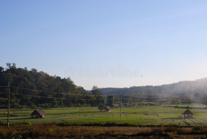 Padieveld en berg in platteland royalty-vrije stock afbeeldingen