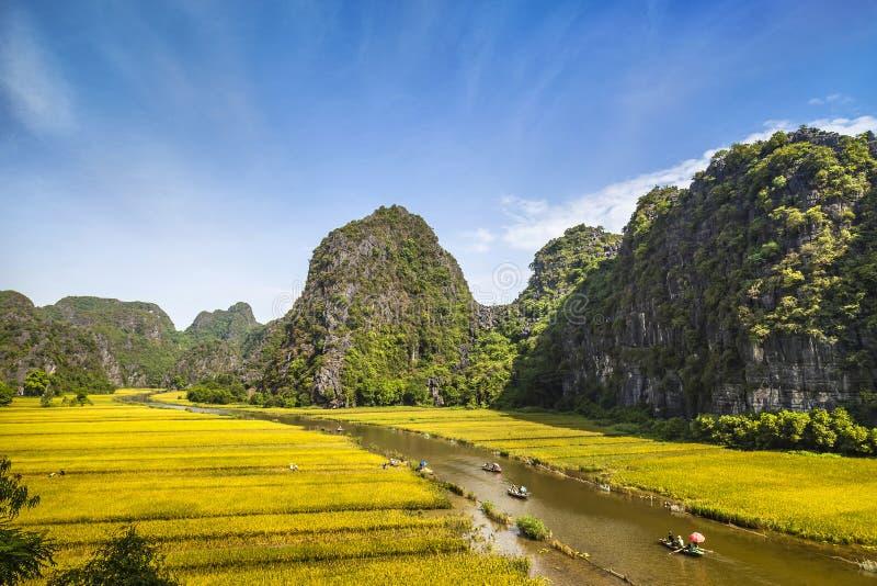 Padieveld en rivier in TamCoc, NinhBinh, Vietnam stock afbeelding