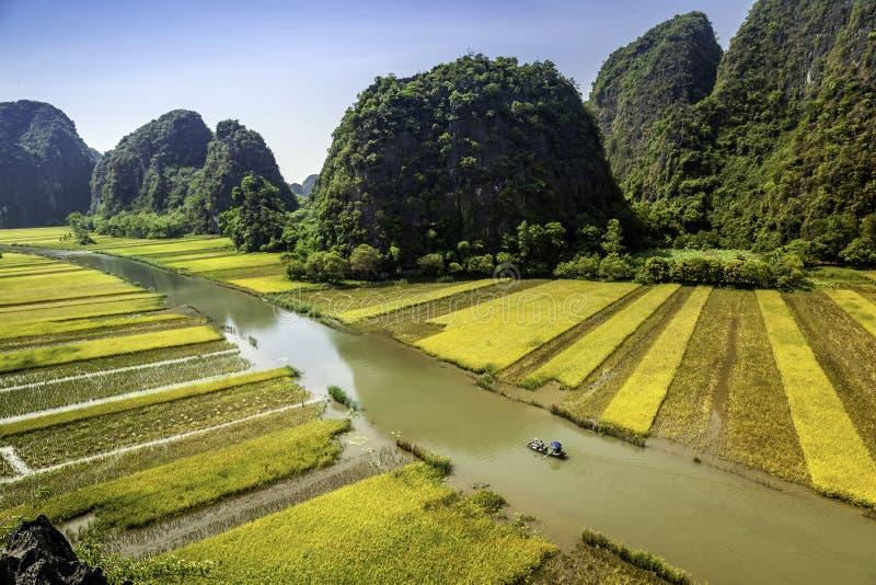 Padieveld en rivier in TamCoc, NinhBinh, Vietnam royalty-vrije stock afbeeldingen