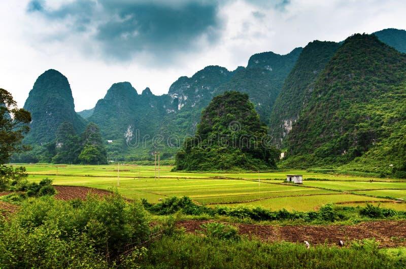 Padievelden en Karst Rotsen in Guangxi-Provincie van China royalty-vrije stock afbeeldingen