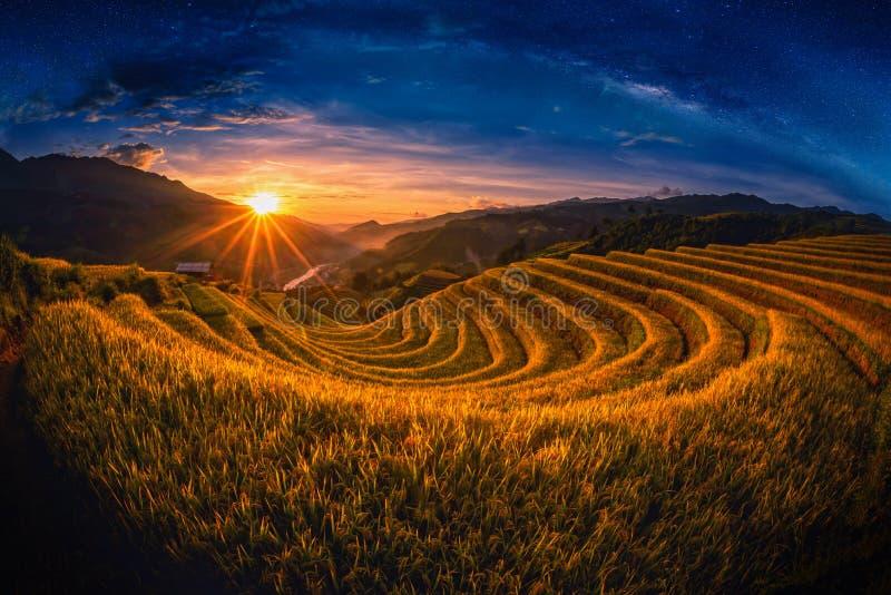 Padievelden op terrasvormig met melkachtige manier bij zonsondergang in Mu Cang Chai stock afbeeldingen