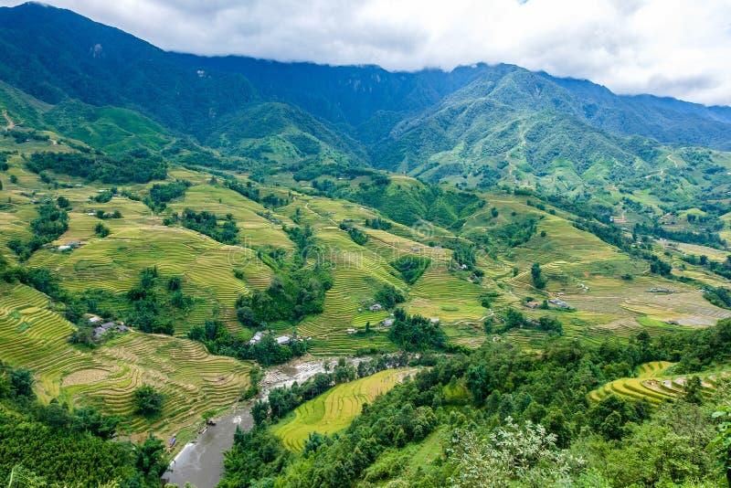 Padievelden op terrasvormig in rainny seizoen bij SAPA, Lao Cai, Vietn royalty-vrije stock foto