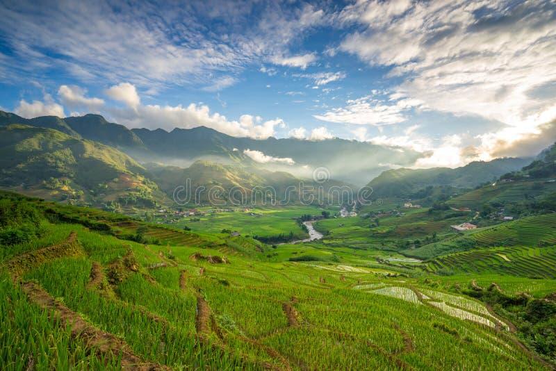 Padievelden op terrasvormig in rainny seizoen bij SAPA, Lao Cai, Vietnam stock fotografie