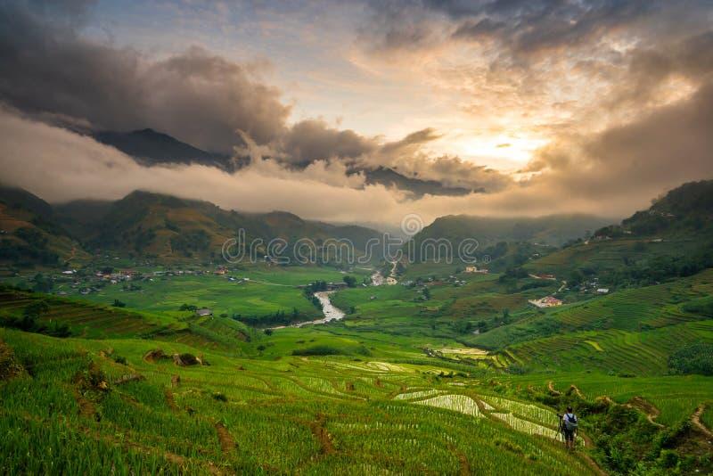 Padievelden op terrasvormig in rainny seizoen bij SAPA, Lao Cai, Vietnam stock afbeelding