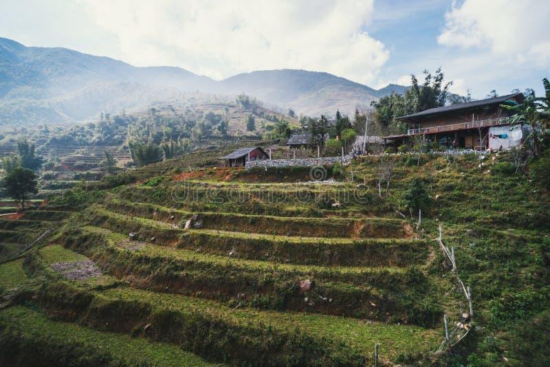 Padievelden op terrasvormig in rainny seizoen bij SAPA, Lao Cai, Vietnam De padievelden treffen voor transplantatie voorbereiding stock foto's