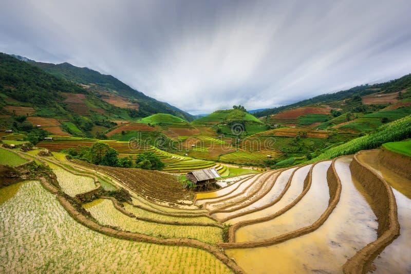 Padievelden op terrasvormig in zonsondergang bij Mu Cang Chai, Yen Bai, Vietnam stock afbeeldingen