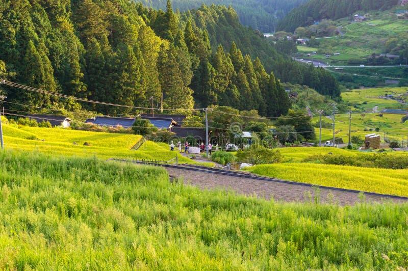 Padieveldlandbouwbedrijf op zonsondergang Yotsuya, Aichi-prefectuur, Japan royalty-vrije stock afbeeldingen