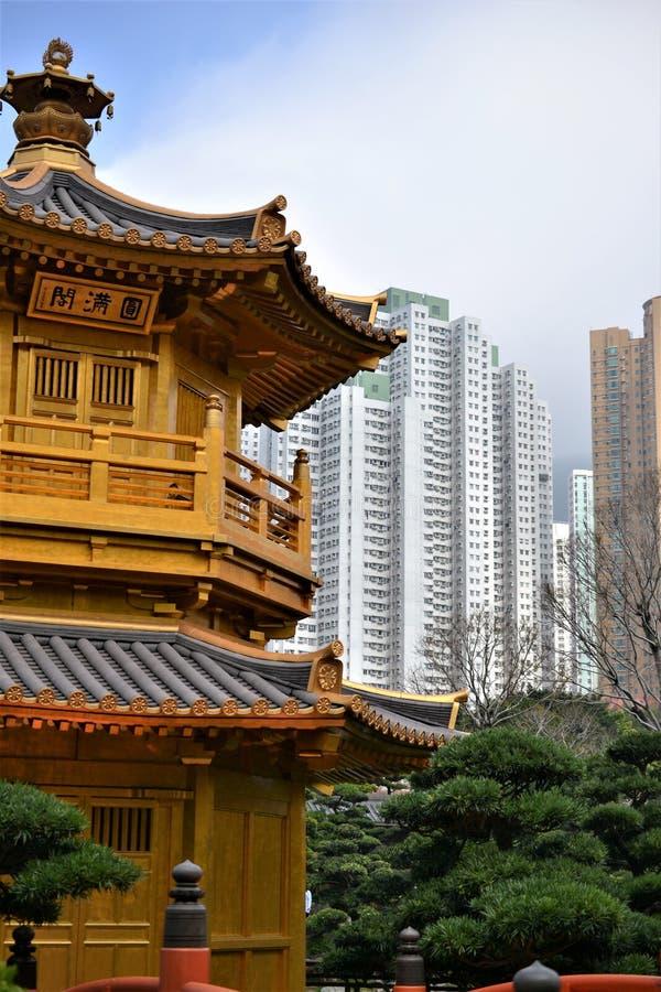 Padiglione dorato con i grattacieli in Nan Lian Garden, Hong Kong fotografia stock libera da diritti