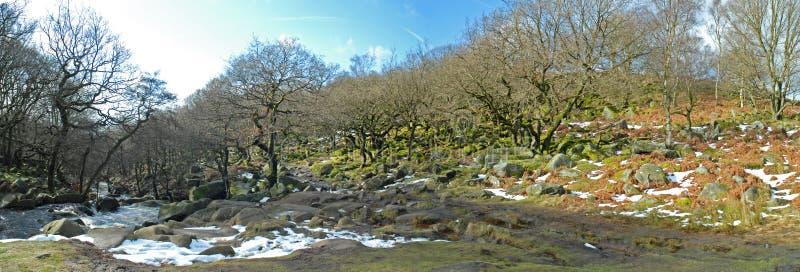 Padley wąwozu Antyczny las i rzeka, Derbyshire obraz royalty free