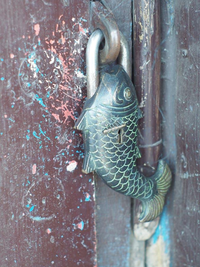 Padlock в форме рыб стоковые фото
