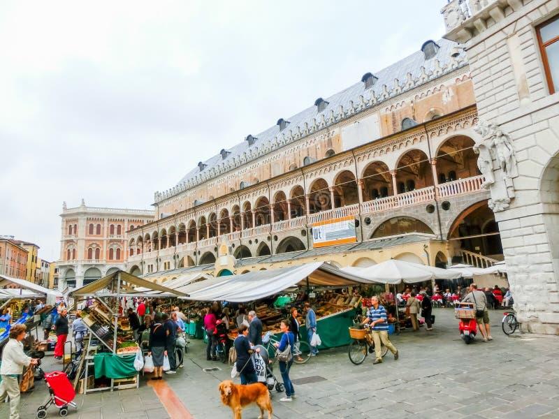Padova, Italia - 19 settembre 2014: Scena del della Ragione di Palazzo immagine stock
