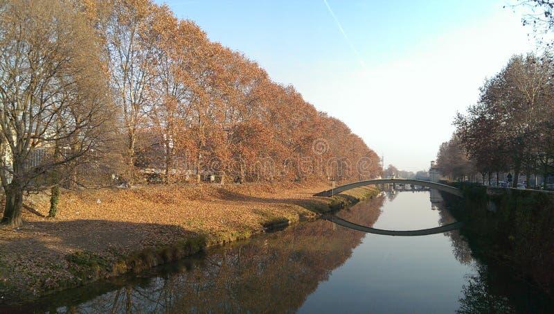 Padova w jesieni, liści spadać fotografia royalty free