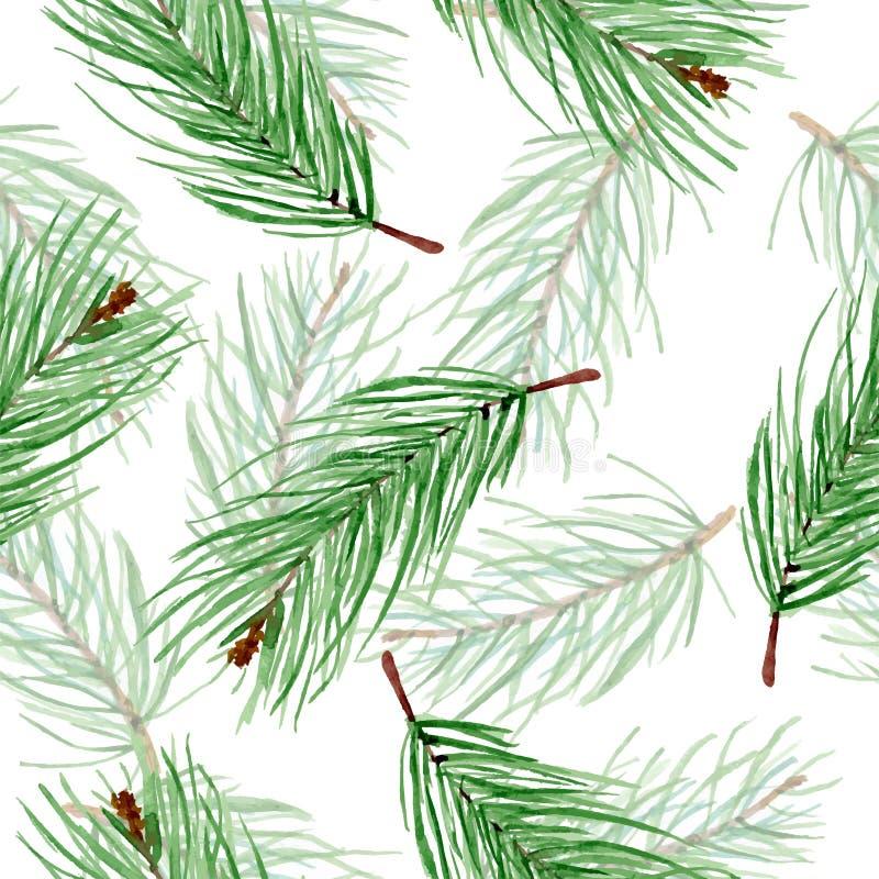 Padrões simples de aquarela Invernos de ramos de abeto verdes em fundo branco Fundo sem fim desenhado pela mão de Natal ilustração royalty free