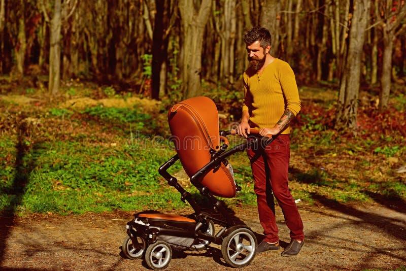Padre con el cochecito de niño en paseo Cochecito de bebé del empuje del padre en parque del otoño Éste es un qué papá impresiona imágenes de archivo libres de regalías