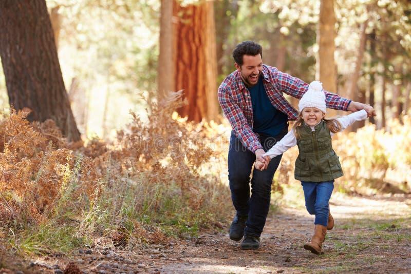 Padre And Daughter Running a través del arbolado de la caída fotos de archivo libres de regalías