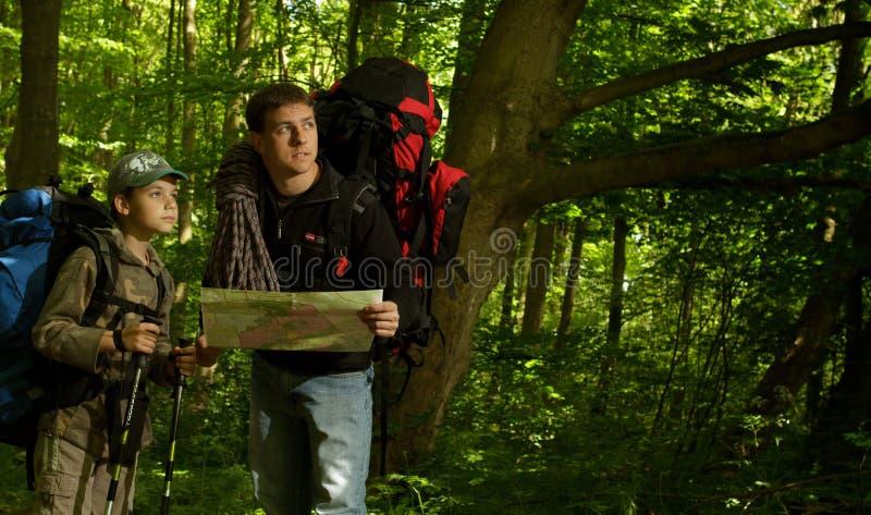Padre e figlio che fanno un'escursione nella foresta fotografia stock libera da diritti