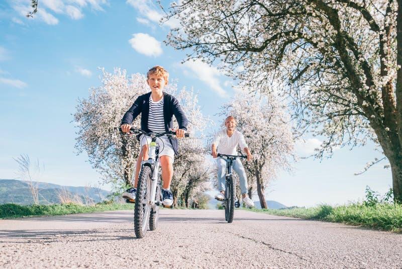Padre e figlio divertendosi quando guidano le biciclette sulla strada campestre sotto gli alberi del fiore Immagine sportiva sana fotografie stock