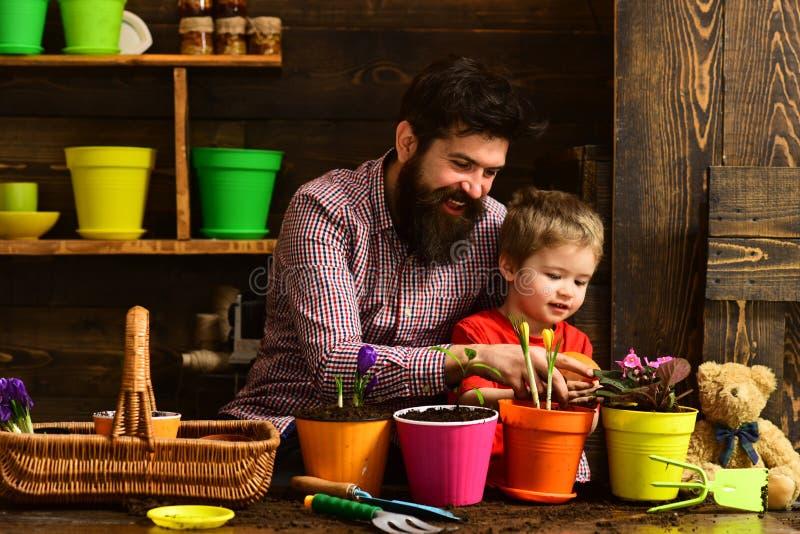Padre e figlio Giorno di padri Cura del fiore Fertilizzanti del suolo giardinieri felici con i fiori della molla uomo barbuto e p fotografia stock