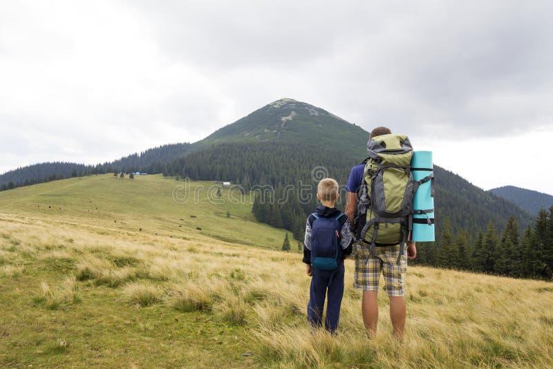 Padre e hijo con las mochilas que caminan junto en montañas del verano Opinión trasera el papá y el niño que llevan a cabo las ma imagenes de archivo