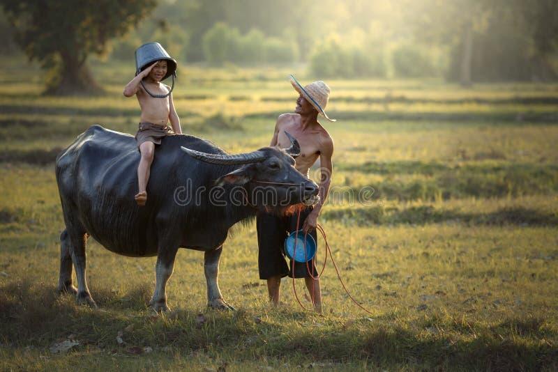 Padre e hijo con un búfalo esta gente tailandesa de la forma de vida en Coun imagenes de archivo