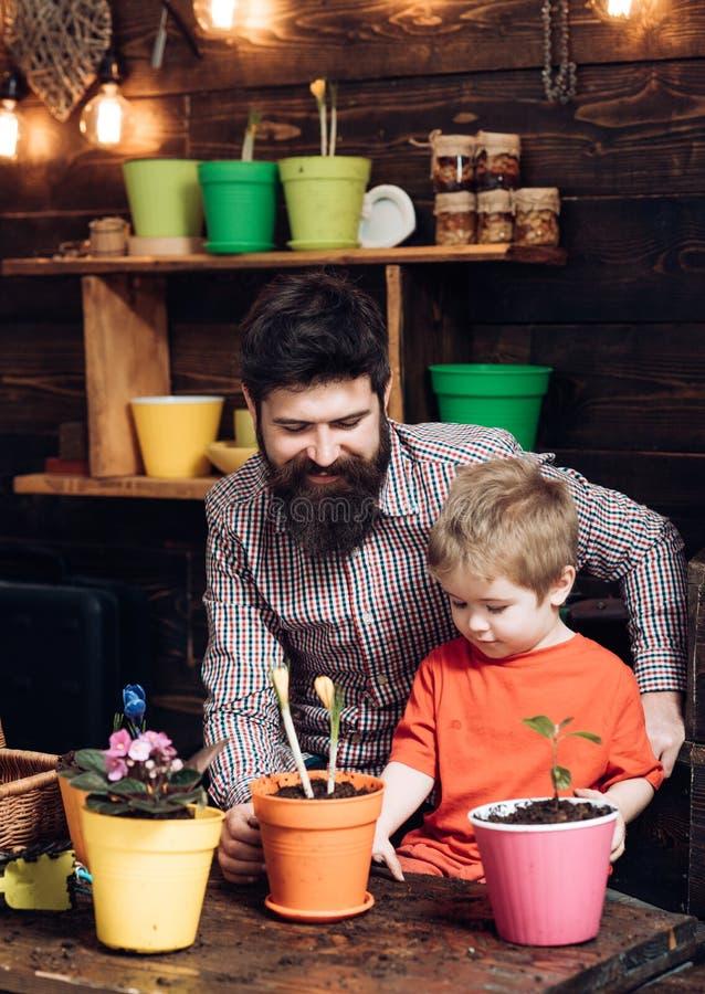 Padre e hijo D?a de padres jardineros felices con las flores de la primavera Naturaleza barbuda del amor del ni?o del hombre y de imagen de archivo libre de regalías