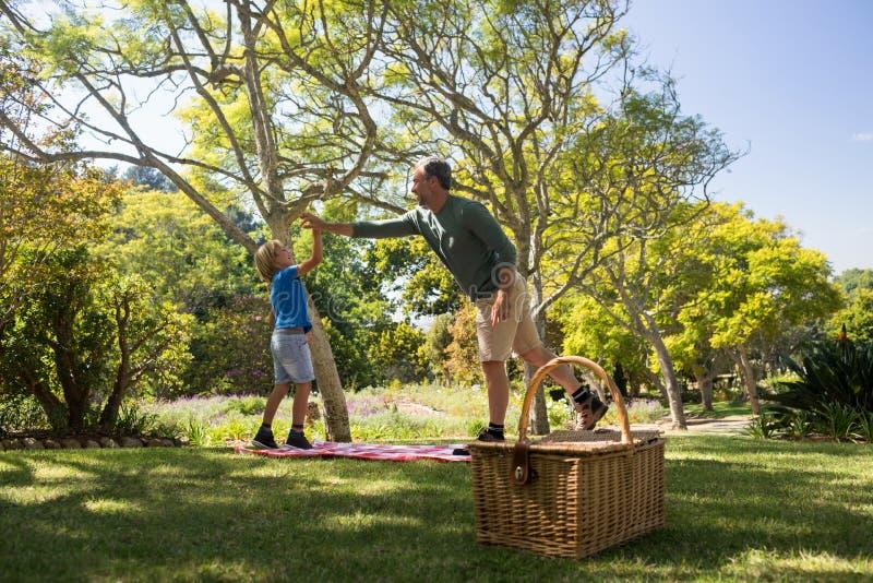 Padre e hijo que dan altos cinco mientras que teniendo comida campestre imagen de archivo libre de regalías