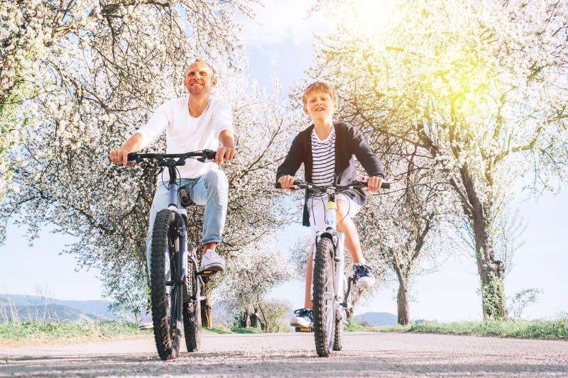 Padre e hijo que se divierten al montar las bicicletas en la carretera nacional debajo de árboles del flor Imagen deportiva sana  fotografía de archivo libre de regalías