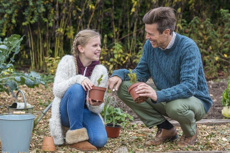 Padre felice Daughter Gardening del bambino della ragazza del padre di famiglia immagini stock