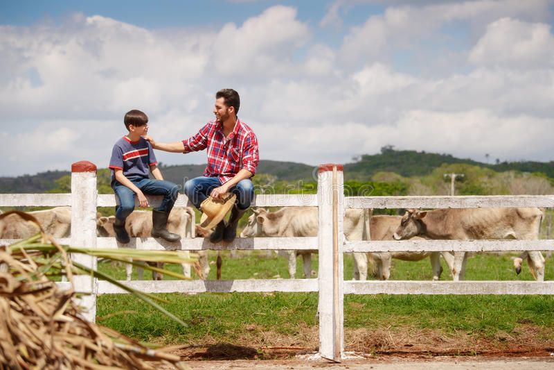 Padre felice And Son Smiling in azienda agricola con le mucche fotografia stock libera da diritti