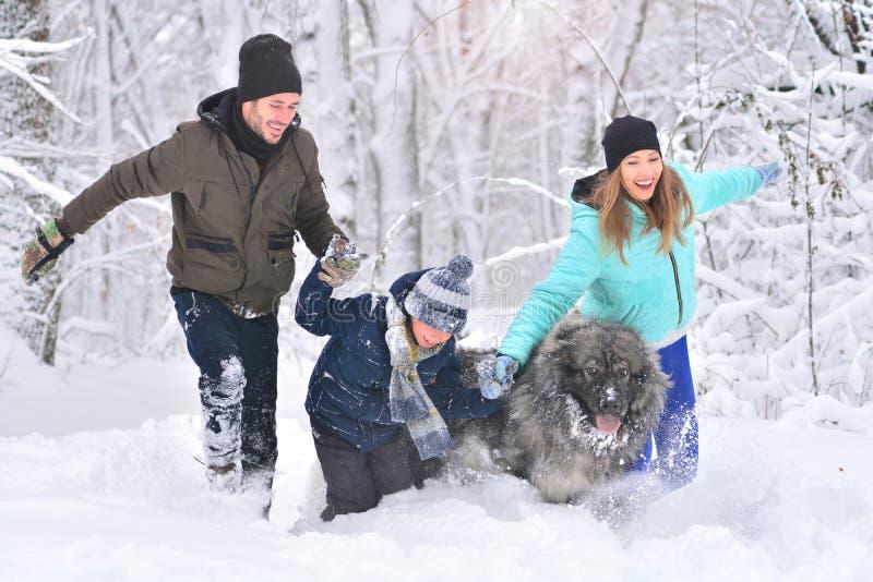 Padre, hijo, madre feliz y animal doméstico de la familia caminando en parque del invierno imágenes de archivo libres de regalías