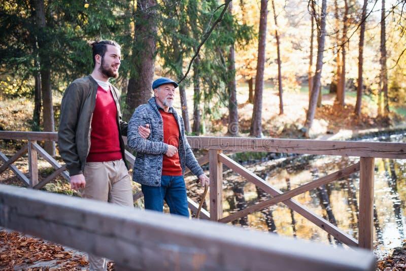 Padre mayor con el bastón y su hijo en paseo en la naturaleza, hablando fotos de archivo libres de regalías