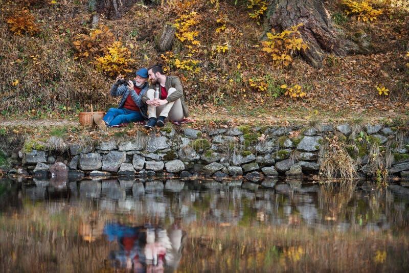 Padre mayor y su hijo con los prismáticos y cesta de la comida campestre en naturaleza imagen de archivo libre de regalías