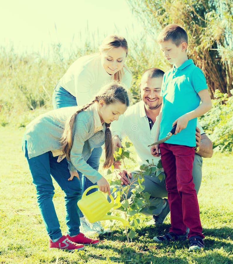 Padres adultos con dos niños que colocan un nuevo árbol foto de archivo