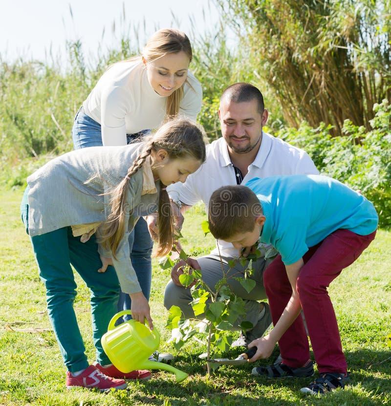 Padres con dos niños que colocan un nuevo árbol foto de archivo