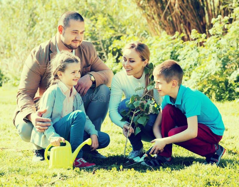 Padres con dos niños que plantan un arbusto fotografía de archivo