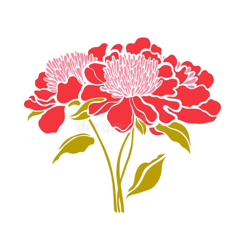 Paeonia Bouquet de trois pivoines illustration libre de droits
